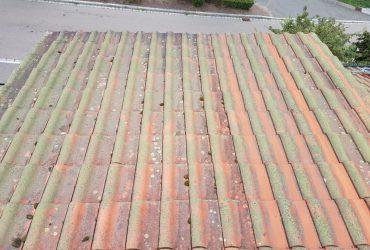 Dachreinigung: Dachfläche vorher